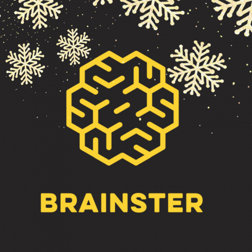 Тимот на Brainster